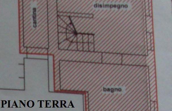 CRSa78 (17)